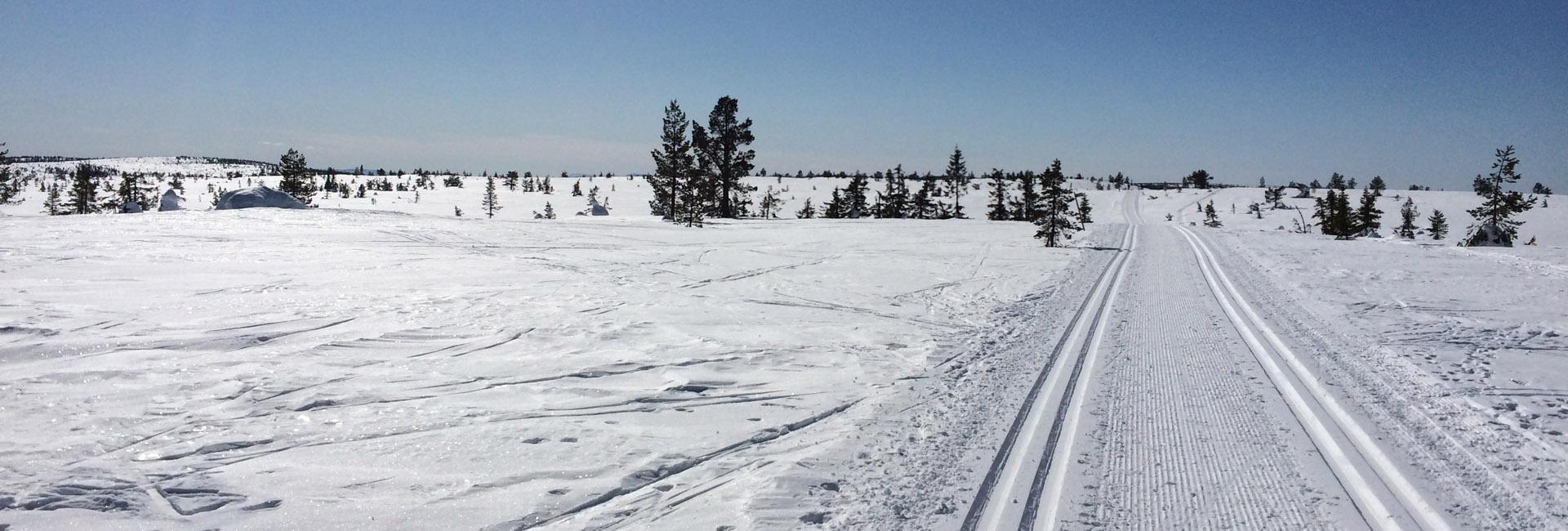 Flotte skiløyper